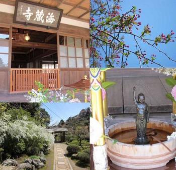 44海蔵寺.jpg